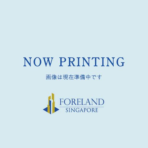 画像準備中です Now Printing FORELAND SINGAPORE